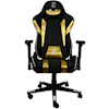 Computer Chairs - ZQRacing Gamer Series QS101 Blk+Gld | ITSpot Computer Components