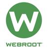 Webroot Enterprise Antivirus & Internet Security Software - Webroot 250-499 ENDPOINTS MONTHLY | ITSpot Computer Components